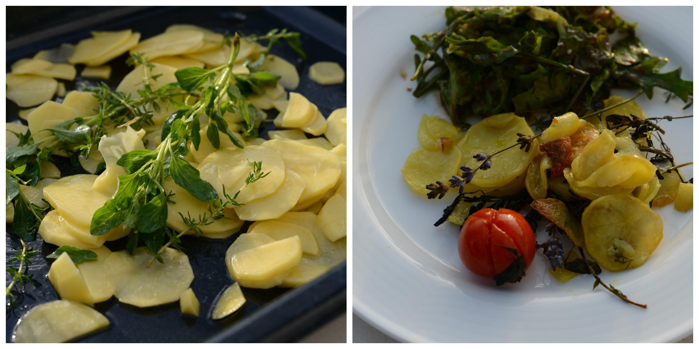 140526_Collage_Kartoffeln